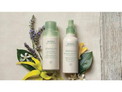 shampure™ dry shampoo e thermal dry conditioner