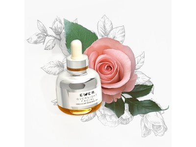 EVER Skin OVERNIGHT FACIAL Cellular Renewal Oil